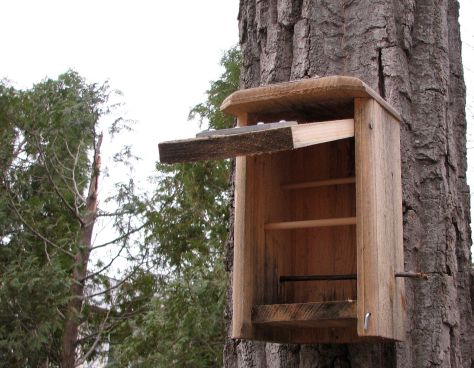 how to build a roosting box