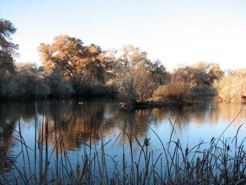 rio-grande-nature-center