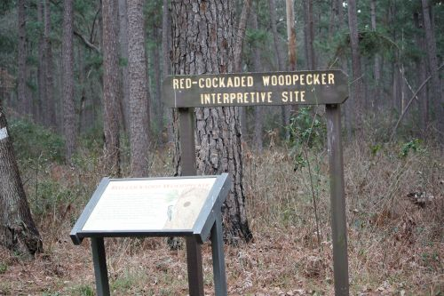 rcwp-interpretive-site