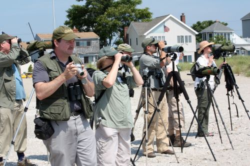 Birders with scopes