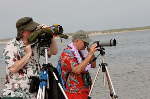 birders in Hawaiian shirts